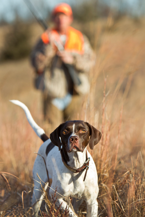 Hunting Jobs and Shooting Sports Jobs, Industry Resources and Career Resources